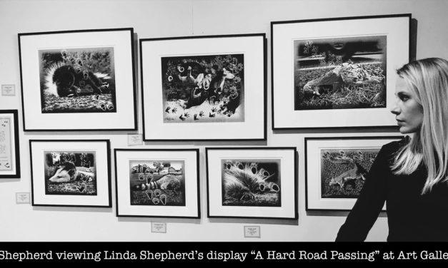 Art Gallery: Honoring Fallen Animals
